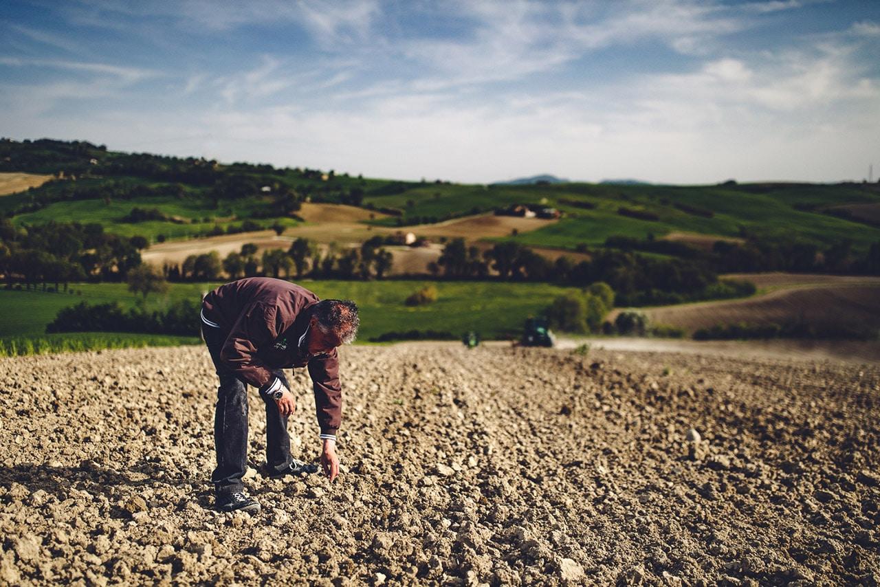 AZIENDA AGRICOLA BIO ITALIANA